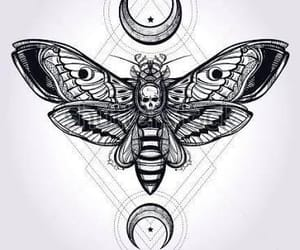 tattoo, moth, and art image