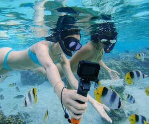 camera, dive, and diving image