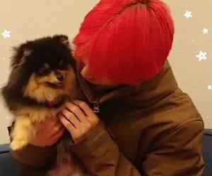 dog, v, and kim taehyung image