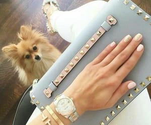 adorable, bling, and animals image
