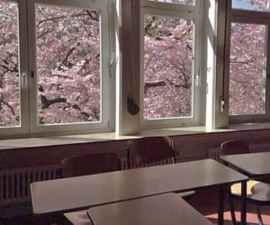 japan, pink, and school image