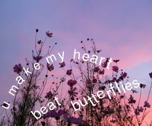 butterflies, pink, and flowers image