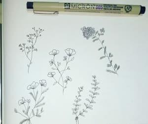 art, botanical, and doodle image