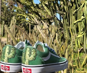 cactus, green, and old skool image