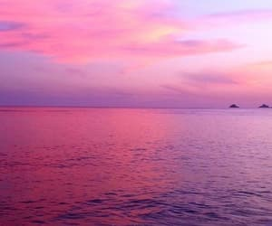 pink, wallpaper, and sea image