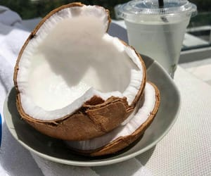 theme and coconut image