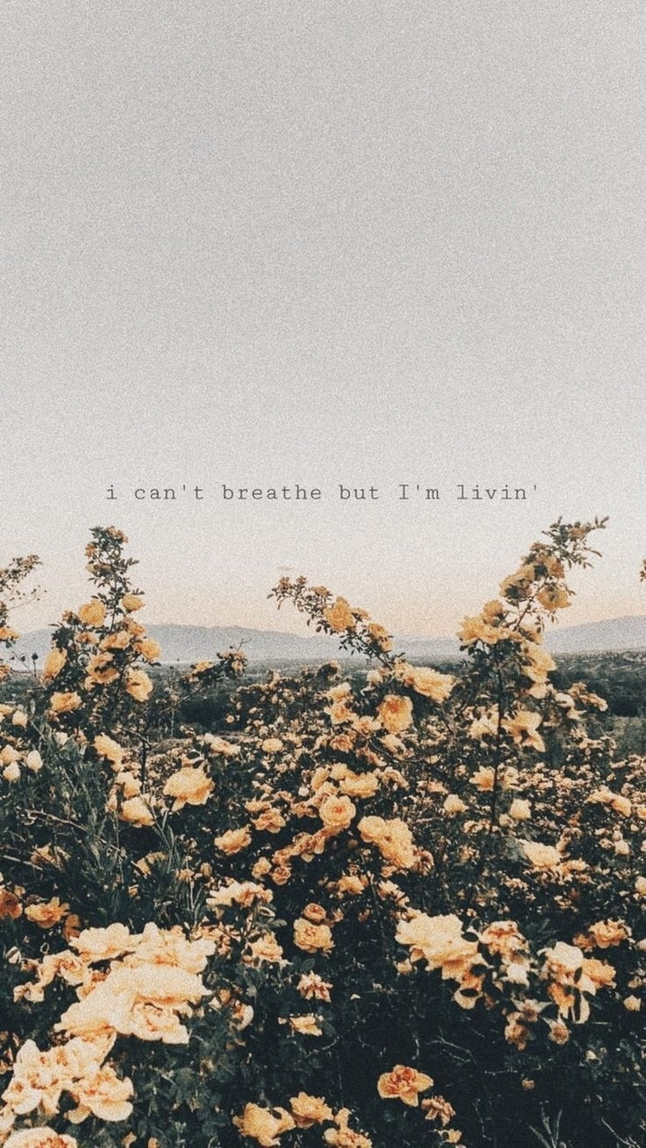 images about quotes of a heavy heart on we heart it see