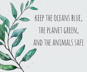 earth, green, and save the animals image