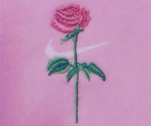 pink, rose, and nike image