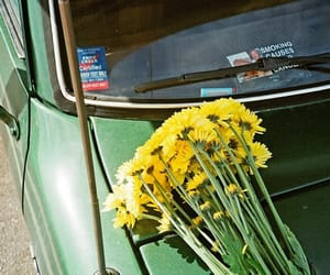 car, flowers, and green image
