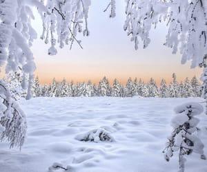 adventure, finland, and seasons image