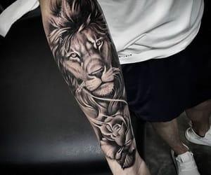 animal, arm, and black image