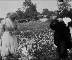 gif, vintage, and the country doctor image