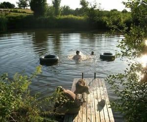 dog, water, and bathe image