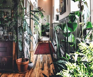 decor, home, and green image