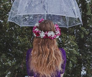 umbrella, photo, and photography image