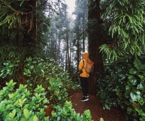 backpacking, green, and photography image