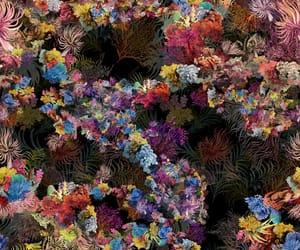 background, pattern, and m.rodarte image