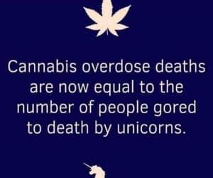 420, marijuana, and smoke image