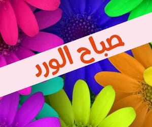 colors, صباح الخير, and الوان image