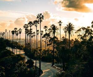 amazing, america, and california image