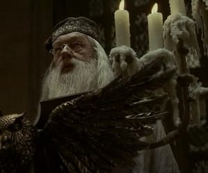 albus dumbledore, candle, and hogwart image