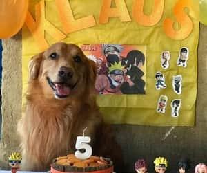 anime, cachorro, and festa image
