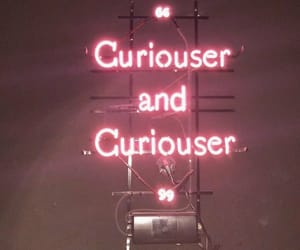 header, twitter, and curiouser image