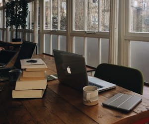 study, book, and library image