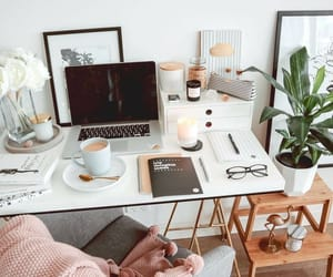 study, books, and office image