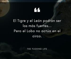 frases, tigre, and lobo image