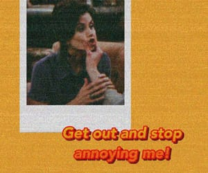 grunge, monica geller, and quotes image