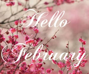 february, pink, and spring image