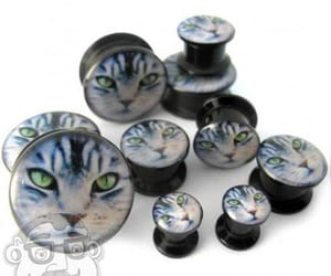 Plugs and stretched ears image