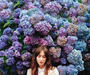 colors, flowers, and fashion image
