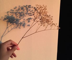 aesthetic, art, and flower image