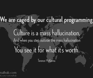 terence mckenna image