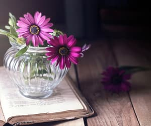 book, flowers, and table image