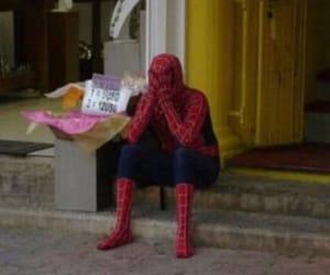 spiderman, meme, and mood image