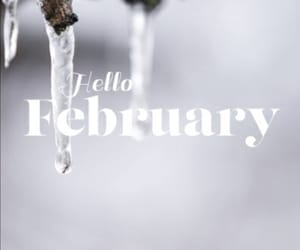 february, hello, and quotes image