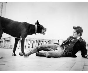 vintage, Alain Delon, and blackwhite image