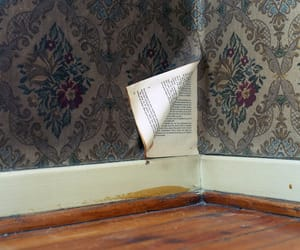 book, wall, and vintage image