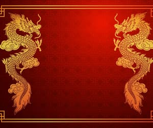 chinese, dragon, and gold image