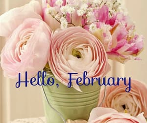 february, hello, and valentine image