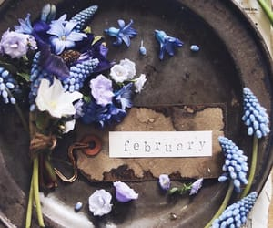february, photography, and winter image