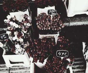 aesthetics, flowers, and theme image