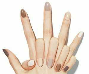 nails, beauty, and nail polish image