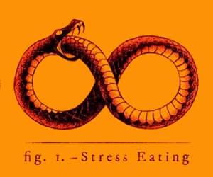 gif, stress, and snake image