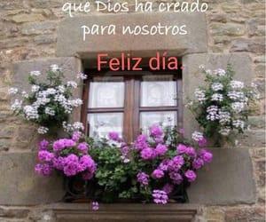 frases, buenos días, and saludos image