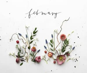 art, february, and flowers image